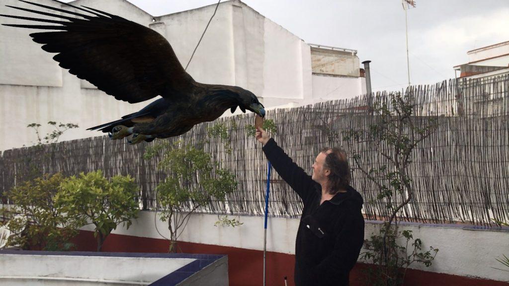3D eagle photo