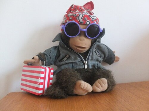 monkey puppet on holiday